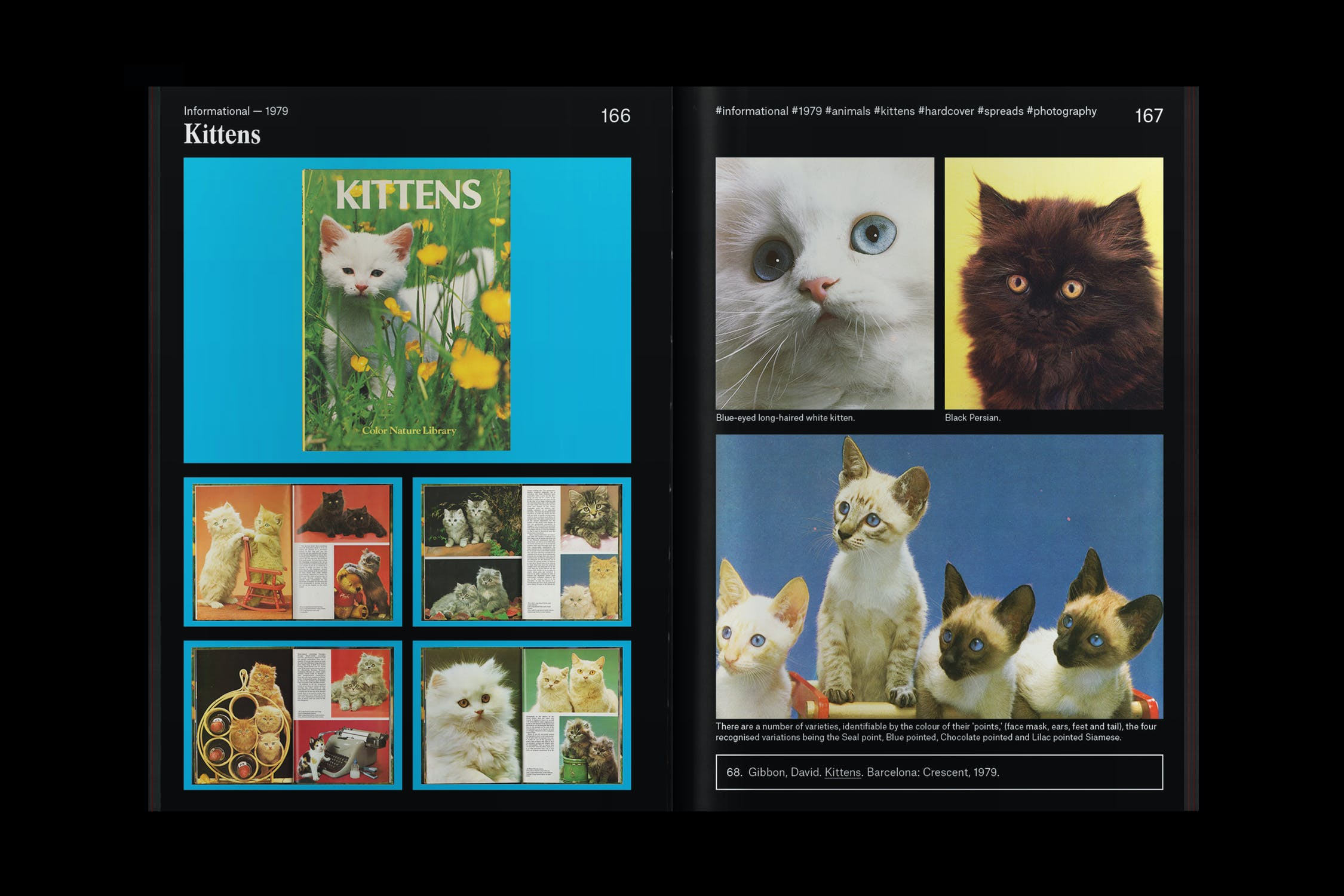 Into the Archives: An Interview with Folder Studio