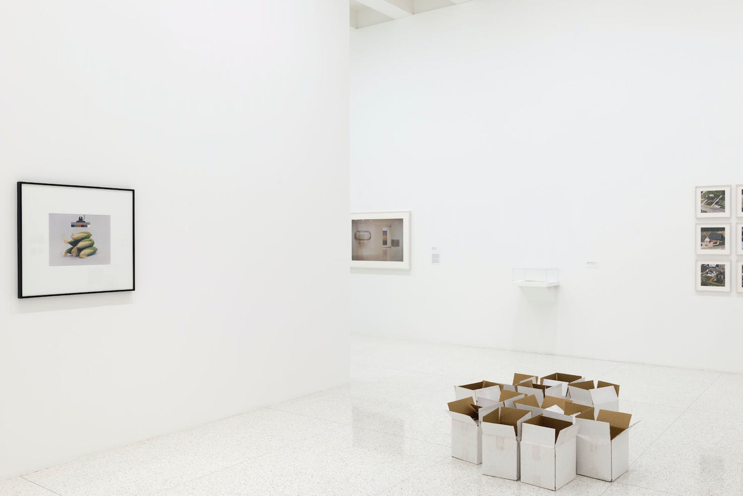 View of the exhibition Ordinary Pictures, 2016