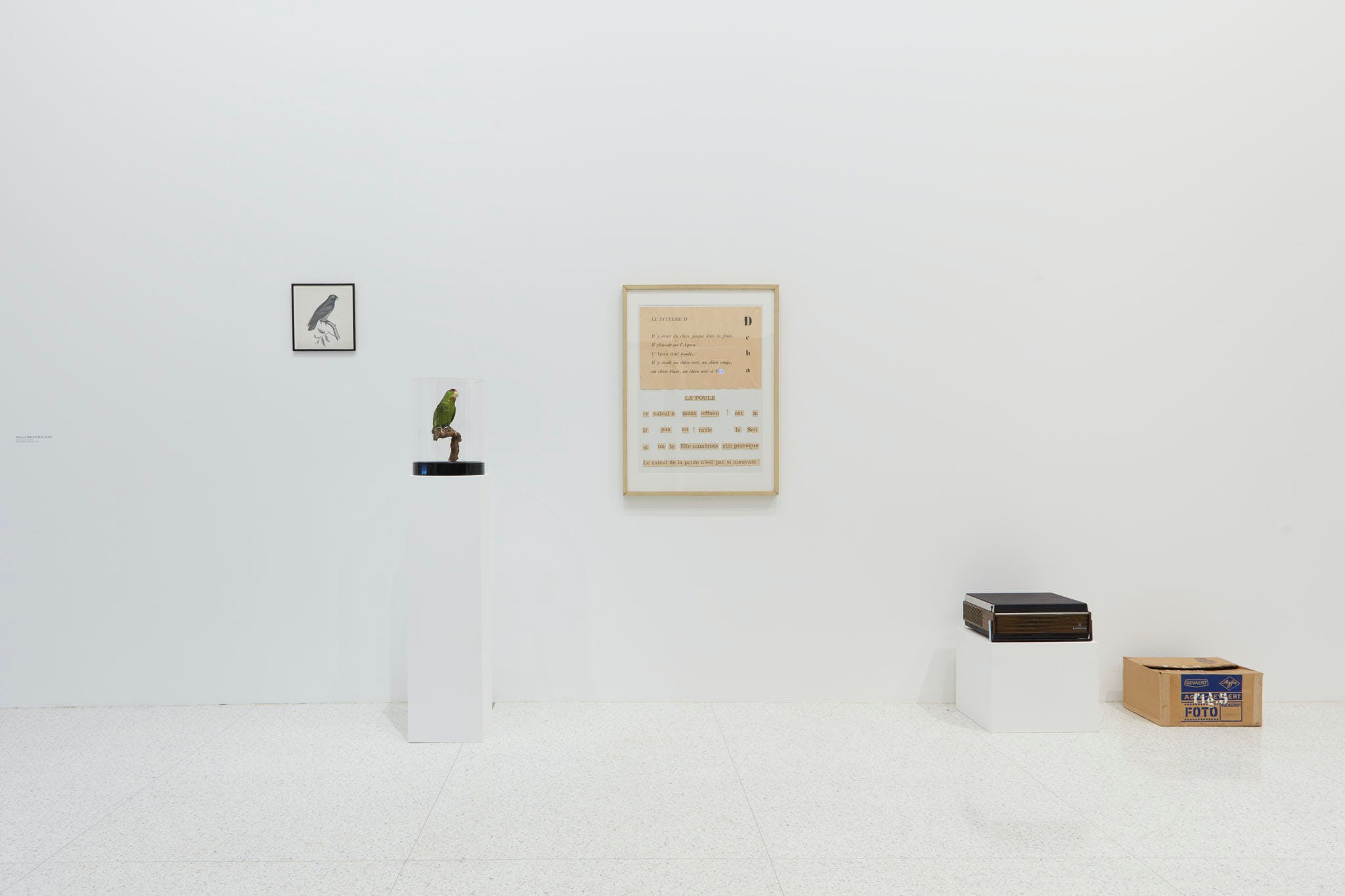 View of the exhibition Question the Wall Itself, 2016; Marcel Broodthaers, Dites partout que je l'ai dit (Say Everywhere I Said So), 1974 (Photo: Gene Pittman, ©Walker Art Center)
