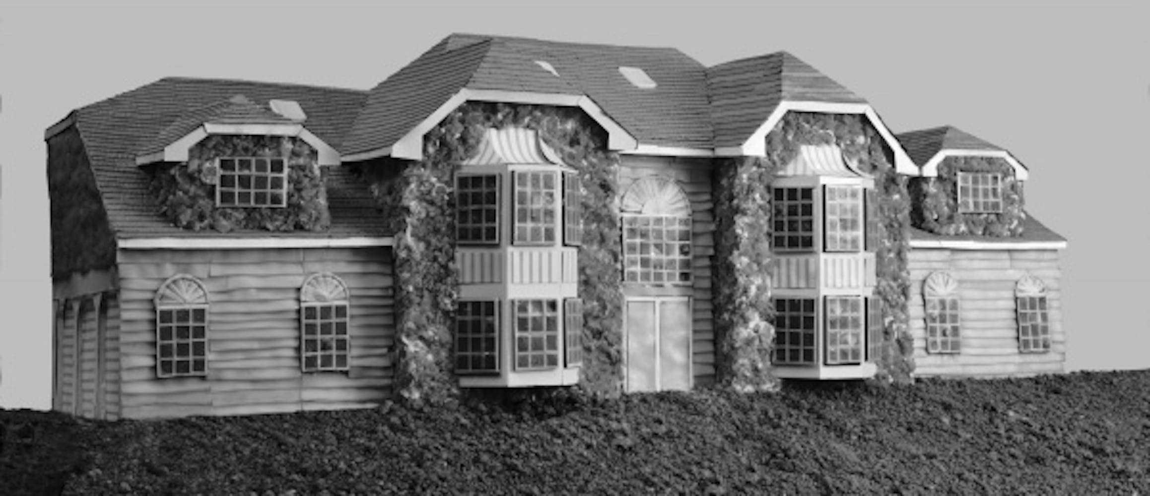 Lee Stoetzel, McMansion 2, 2005
