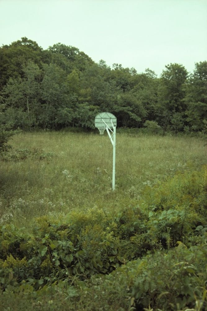 Richard Prince, Upstate, 1995-99