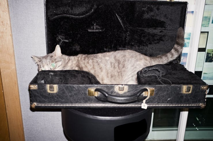 man inside instrument case