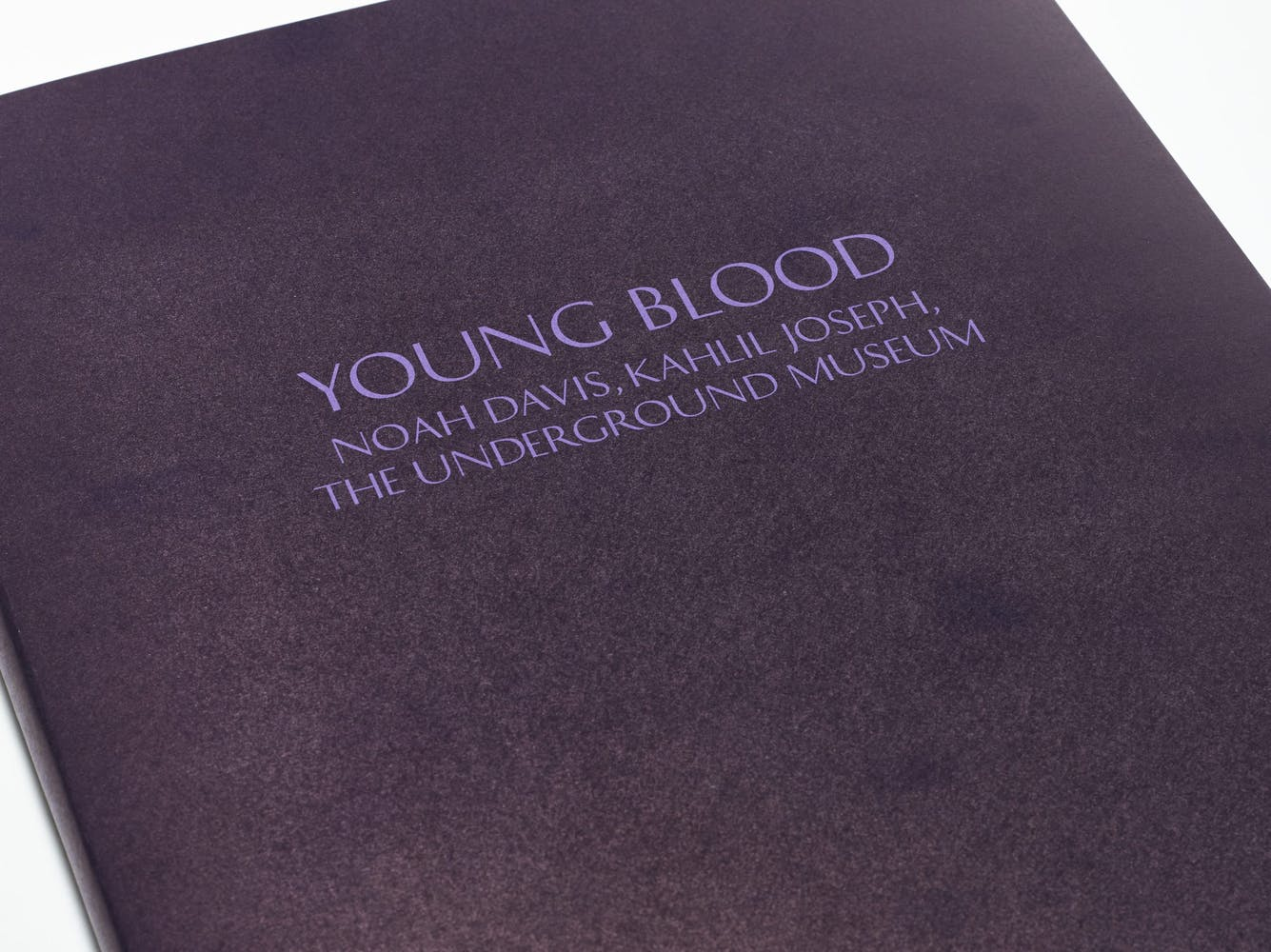 """Closeup image of purple typography-only book cover for """"Young Blood"""""""