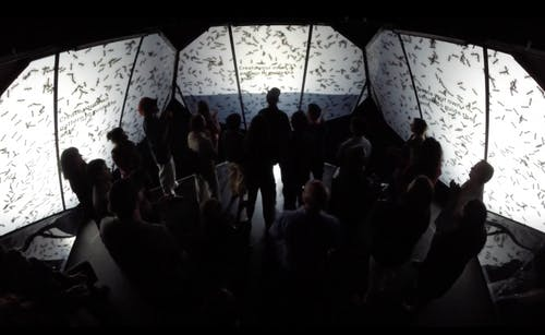 Images from Complex Movements' project, Beware of the Dandelions, installation view inside the pods installed at On The Boards in Seattle, Washington, May 2015. Photo courtesy of Complex Movements.