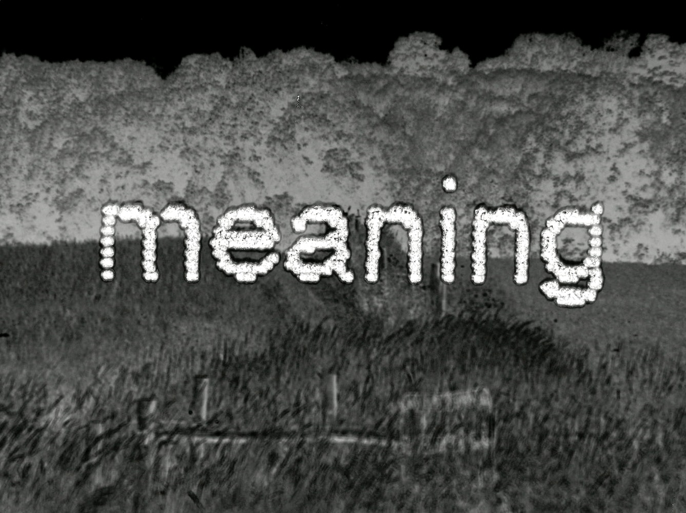 """Black and white image of landscape with the word """"meaning"""" superimposed on top"""