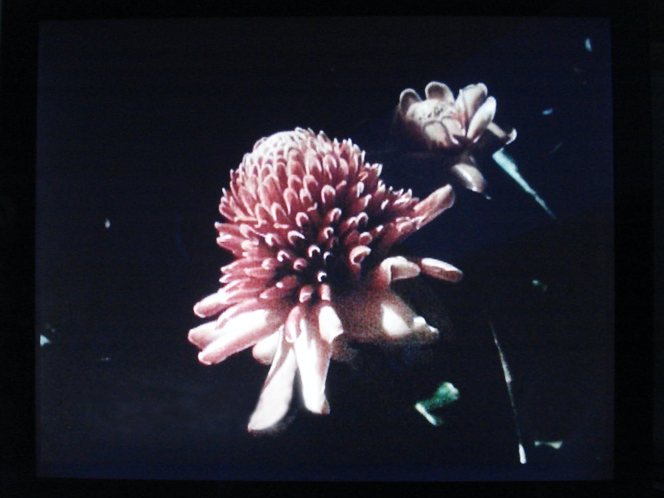 Yto Barrada, Hand-Me-Downs, 2011 (film still)