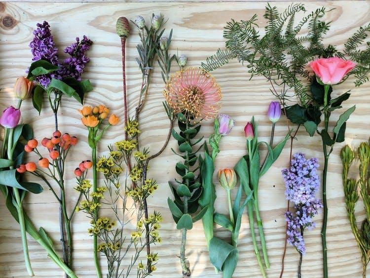 Flowers arranged on a table
