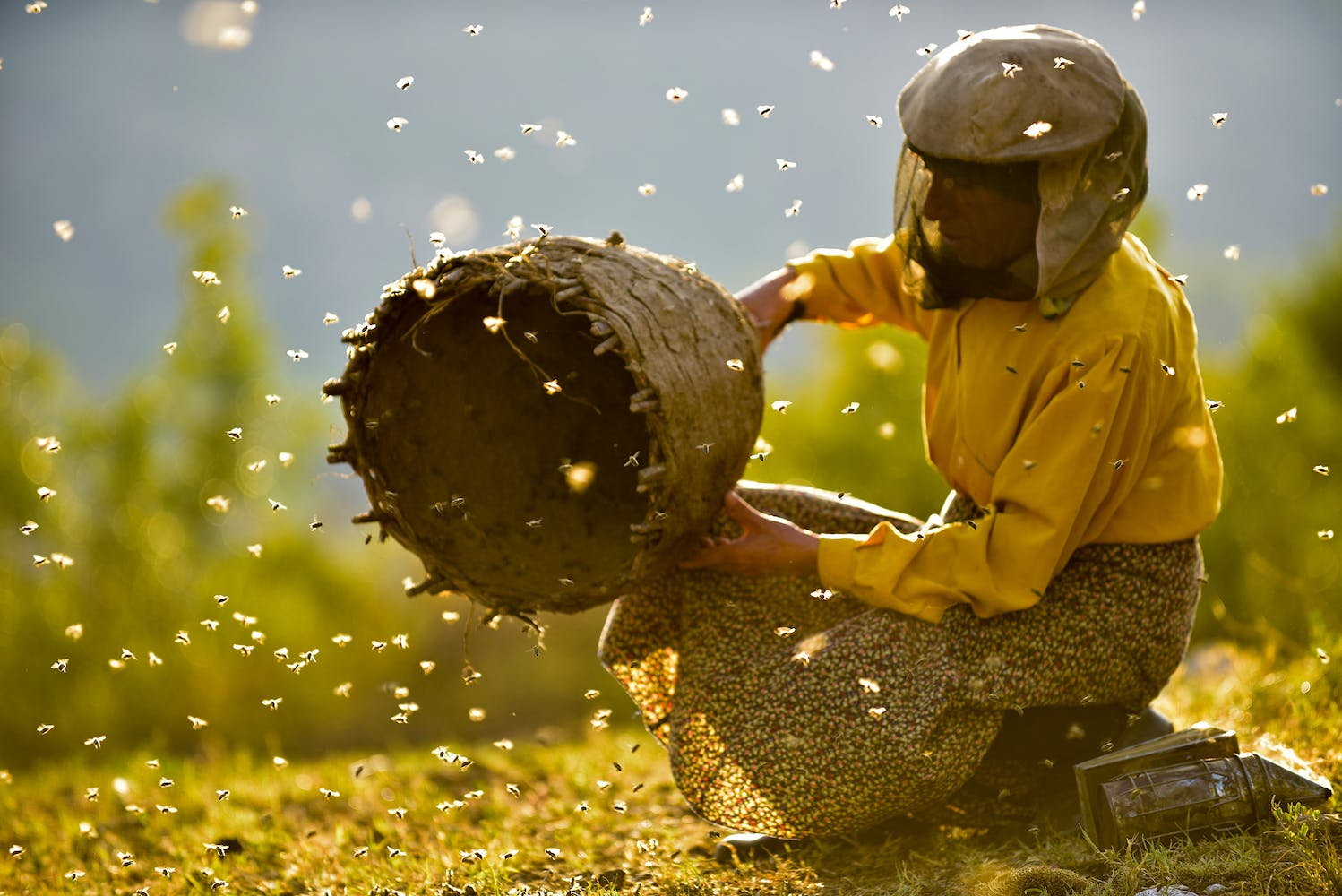 A beekeeper in a protective mask holding part of a bee hive, surrounded by bees in flight