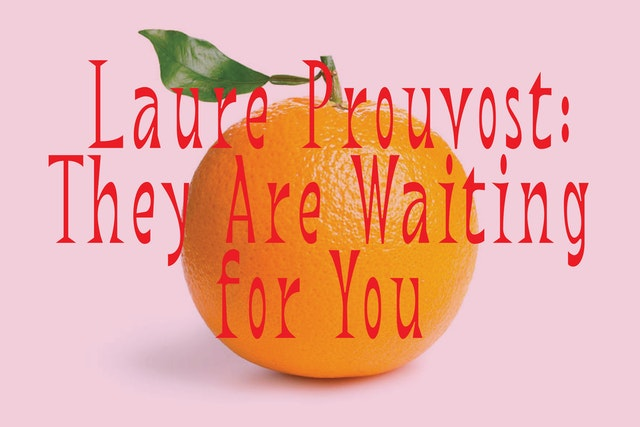 Laure Prouvost: They Are Waiting for You