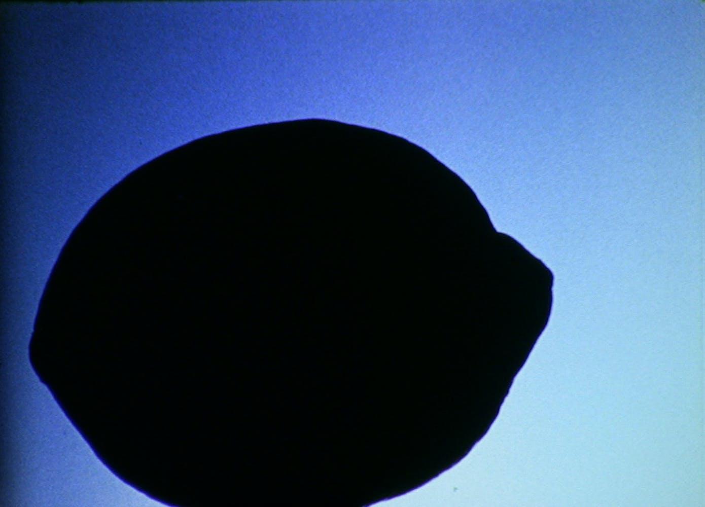 Hollis Frampton, Lemon, 1969 (film still)