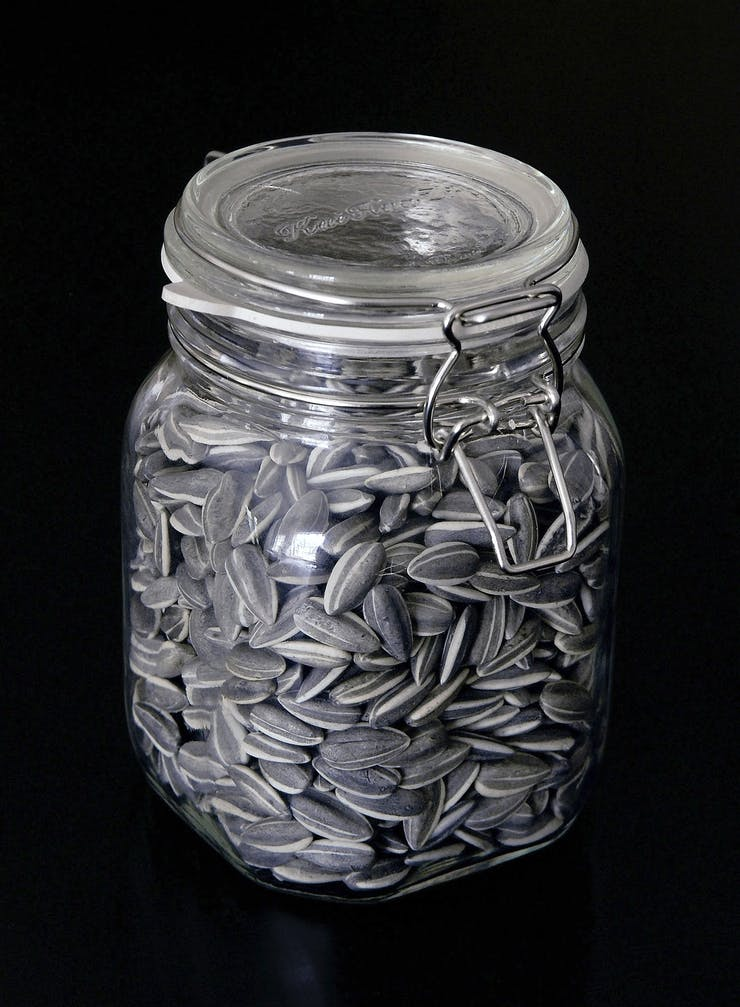 Ai Weiwei, Sunflower Seeds