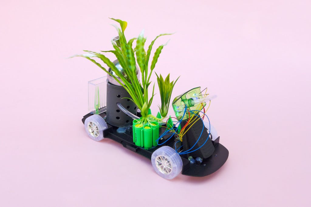 Photo of GM Platano Garden Cart artwork