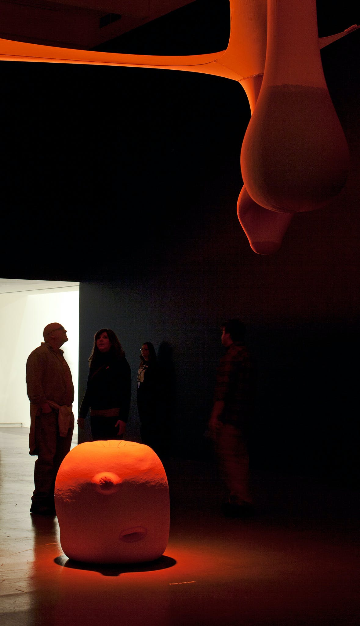 Installation view of the exhibition Dance Works II: Merce Cunningham/Ernesto Neto, 2011
