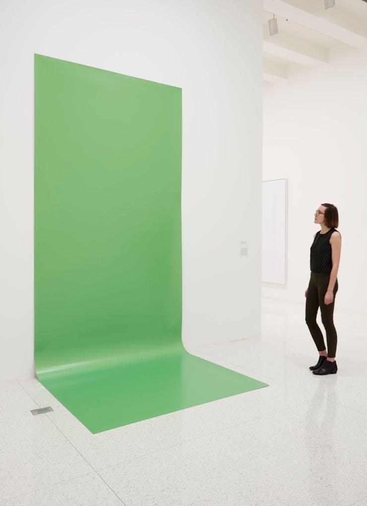 Liz Deschenes, Green Screen