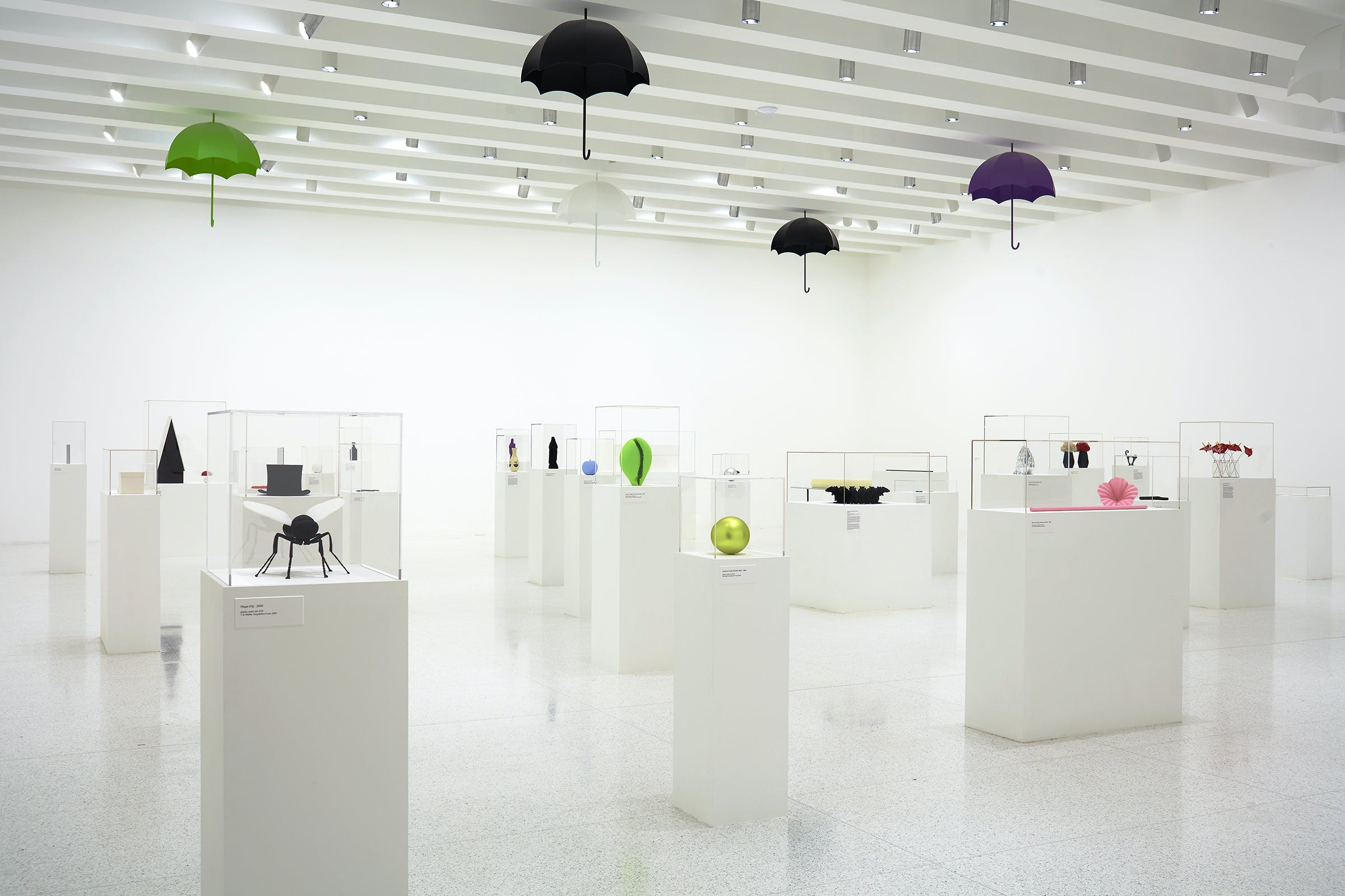 Installation view of the exhibition Katharina Fritsch: Multiples, 2017 (Photo: Gene Pittman, ©Walker Art Center)