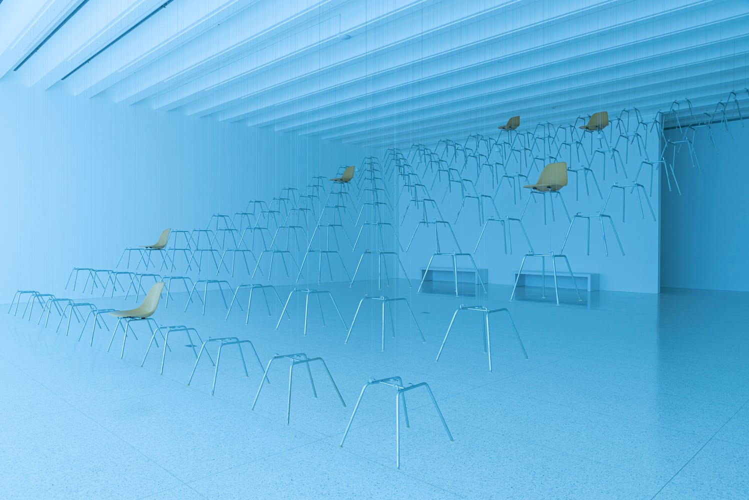 Gallery bathed in blue light with chairs and chair legs suspended from the ceiling