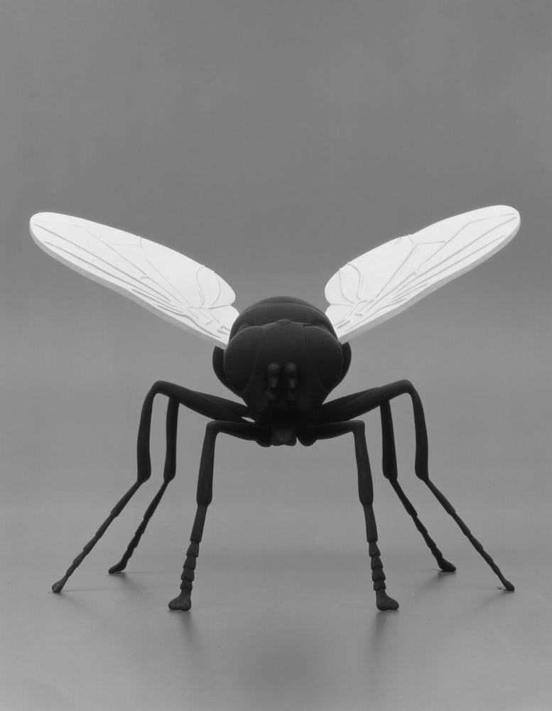 Insect sculpture Katharina Fritsch