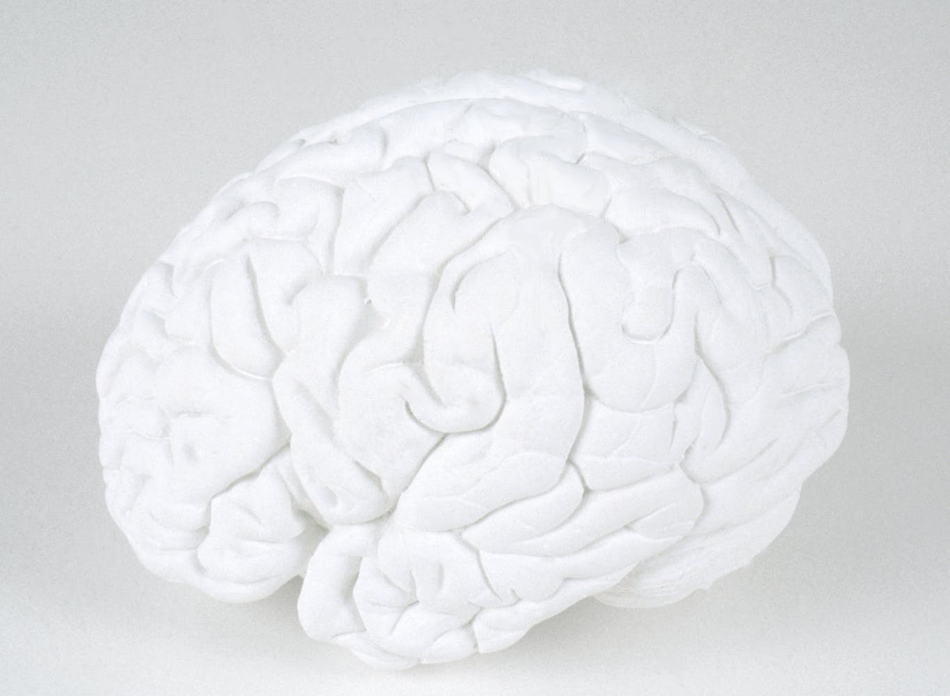 brain sculpture Katharina Fritsch