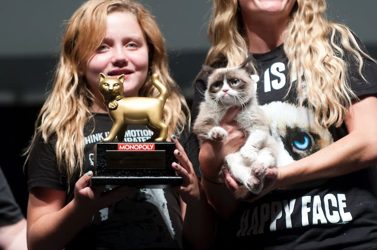 The 2013 Internet Cat Video Festival