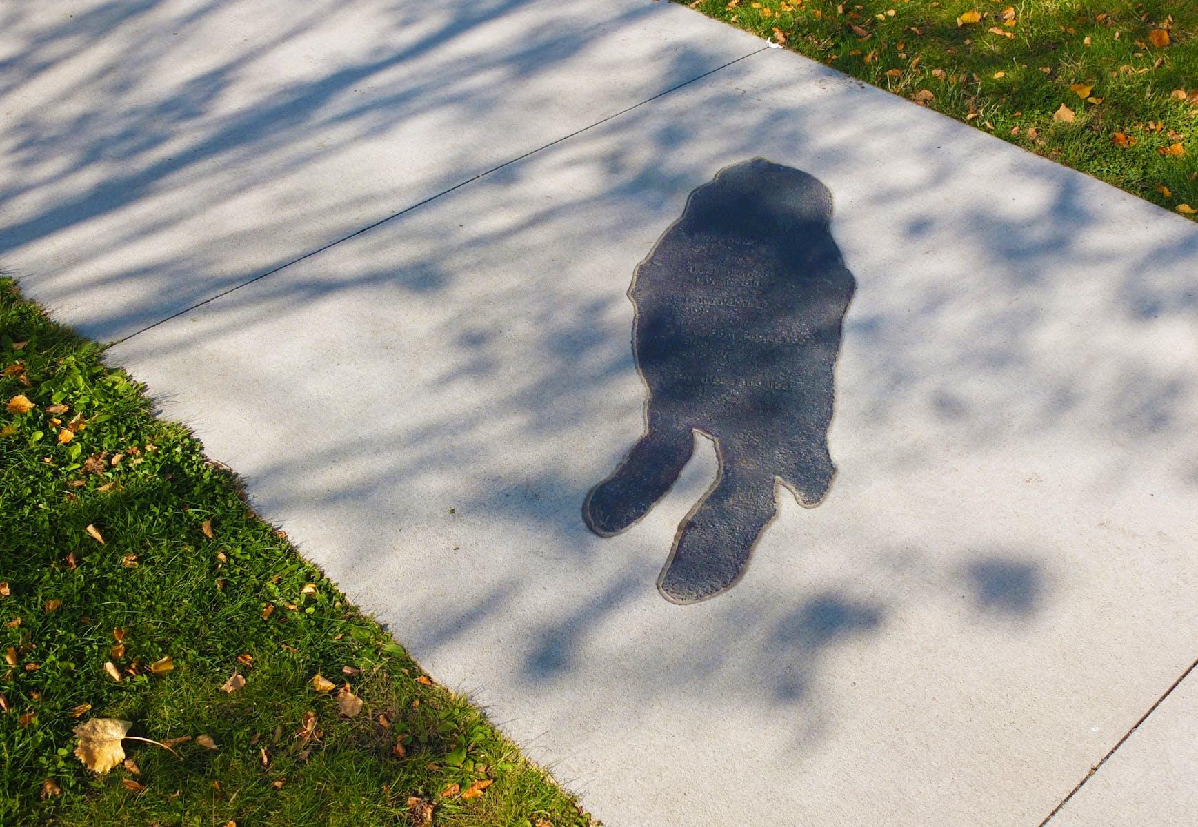 Shadows at the Crossroads - Eliza Winston
