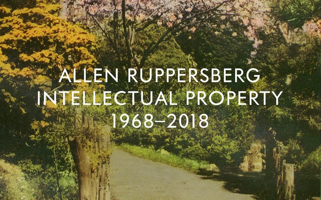 Allen Ruppersberg Intellectual Property 1968-2018
